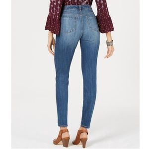Style & Co Jeans - STYLE & CO Embroidered Skinny Jeans